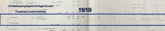1919TaxDupOrgTwpVol191Page75Line232.JPG